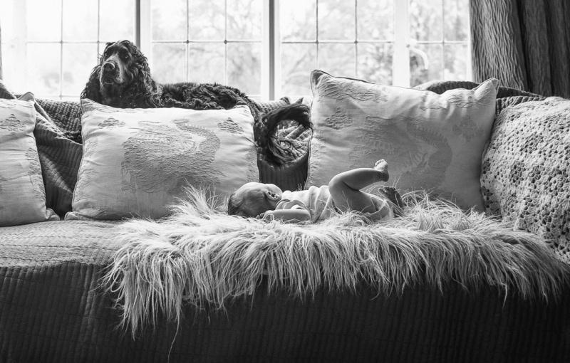 lifestyle_newborn_photography_zelda_rhiannon_photography-6